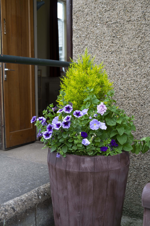 Memorial Hall planter